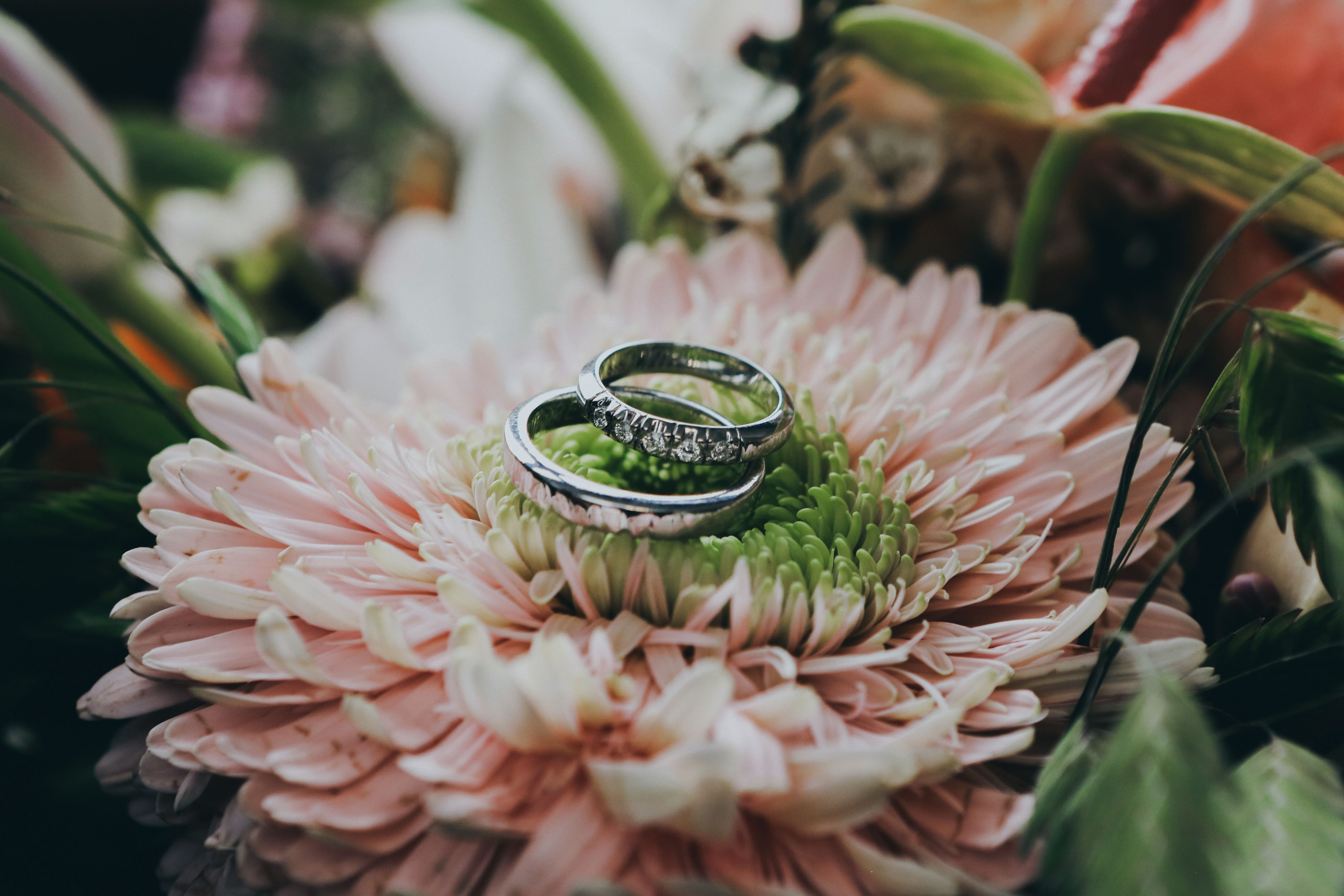 Jardines con vista y acceso al lago para bodas y eventos sociales en Tequesquitengo, Morelos. Proveedores de banquetes, pirotécnia, música, flores...